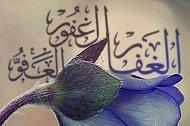 अल्लाह तआला अल अफ्व,अल ग़फूर और अल ग़फ्फार है..
