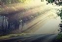 ایک اللہ کو ماننے والے بندے پر توحید کا اثر